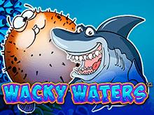 Wacky Waters